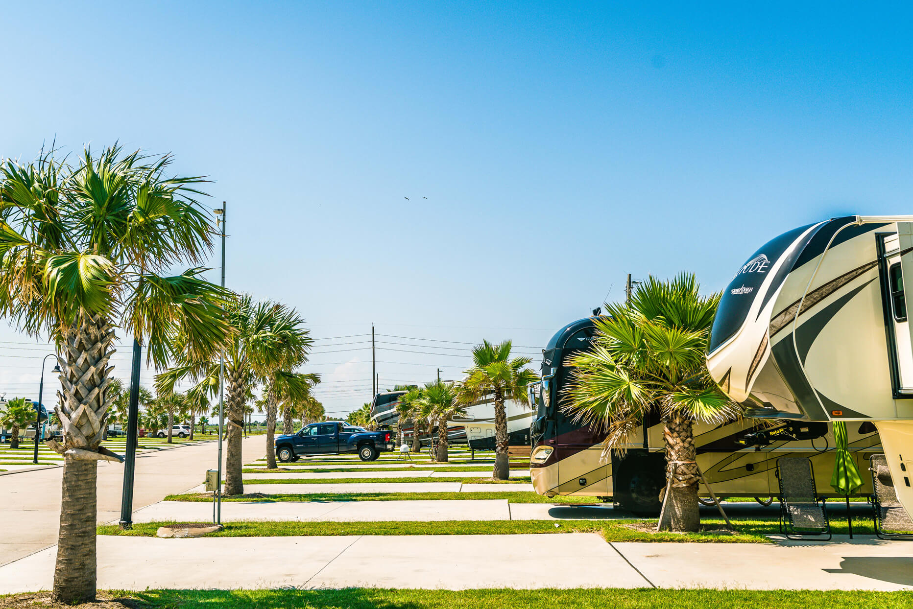 RV sites with palm trees at our Galveston RV park - Stella Mare RV Resort